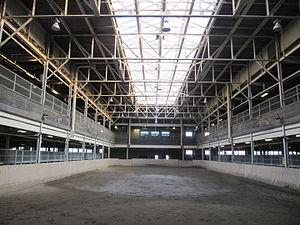 Horse Palace - Horse Palace exercise ring