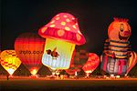 Hot air balloons at night (4579518987).jpg