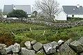 Houses on Leitir Móir (Lettermore) - geograph.org.uk - 1250785.jpg