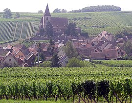 View of Hunawihr, with the fortified Saint-Jacques-le-Majeur Church and vineyards