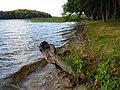 Ińsko, Poland - panoramio (1).jpg