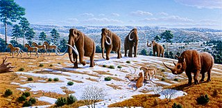 Quaternary extinction event mass extinction event, occurring around 10,000 BCE, marking the end of the Pleistocene and the beginning of the Holocene