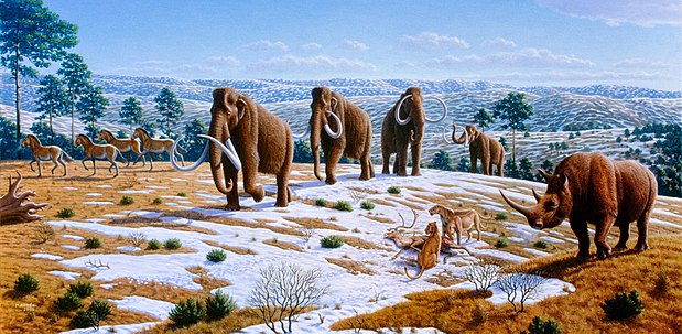 A late Pleistocene landscape in northern Spain with woolly mammoths, horses, a woolly rhinoceros and European cave lions with a reindeer carcass. Artwork by Mauricio Antón.