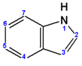 Indole (numbered).png