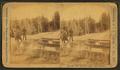 Ingersoll Spring (Bob), by Ingersoll, T. W. (Truman Ward), 1862-1922 3.png