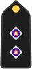 Insigno PM O5.PNG