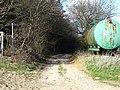 Into Longton Wood - geograph.org.uk - 149154.jpg
