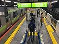 JR Osaki station platform - night - Dec 02 2018 08-35 PM.jpeg
