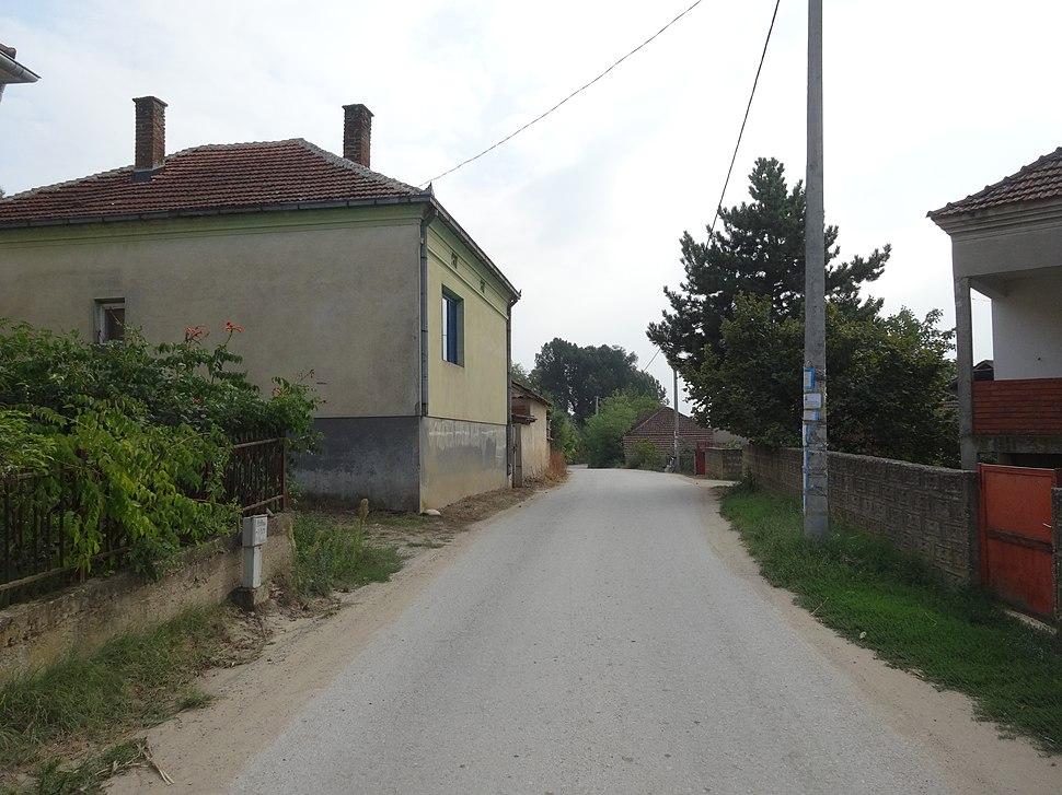 Jelašnica, Leskovac, a06