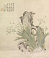 Ju Lian - Narcissus, Rock, Bees and Linghzhi - 2004.71 - Indianapolis Museum of Art.jpg