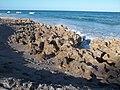 Jupiter FL Coral Cove Park beach08.jpg