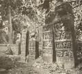 KITLV 88162 - Unknown - Reliefs at Borivali in British India - 1897.tif