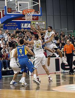 Nemanja Aleksandrov Serbian basketball player