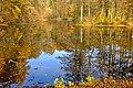 Kaceřov rybníček (1).jpg