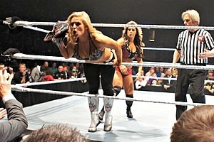 Kaitlyn (wrestler) - Kaitlyn wrestling Natalya during a WWE house show in November 2012