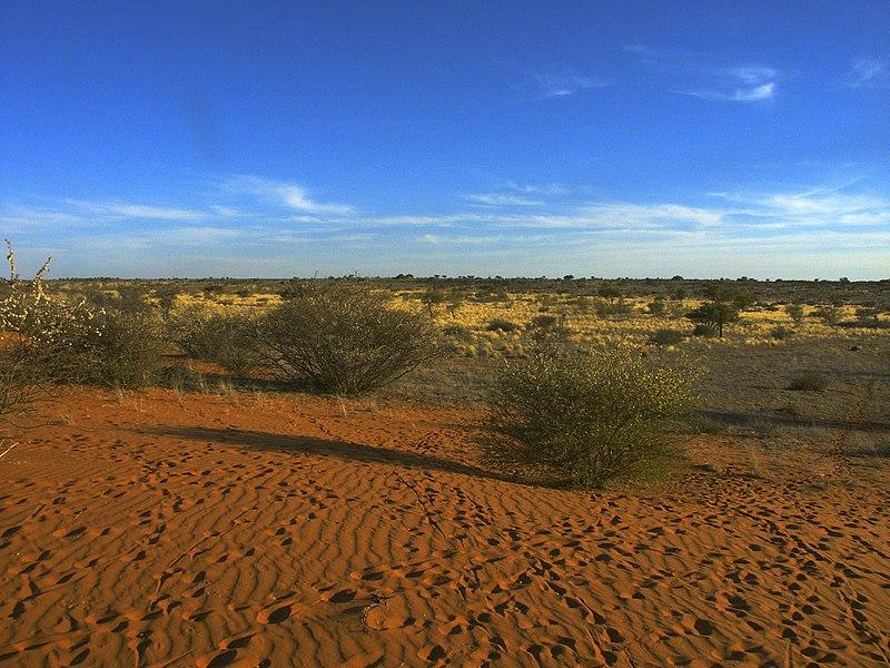 The Kalahari Desert, Botswana