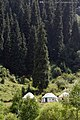 Kazakh yurts at Almaarasan valley - panoramio.jpg