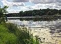 Keller Lake - Maplewood, MN - panoramio (5).jpg