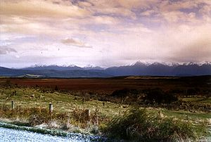 English: A view of the Kepler Mire String Bog ...