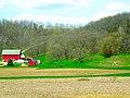 Kerl Family Farm - panoramio.jpg