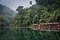 Khao Sok National Park, Khlong Sok, Thailand (Unsplash).jpg
