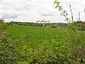 Killyfana Townland - geograph.org.uk - 1865396.jpg
