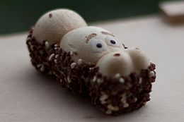 Kinder Happy Hippo from Germany.jpg