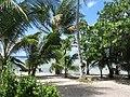 Kiribati(018).JPG