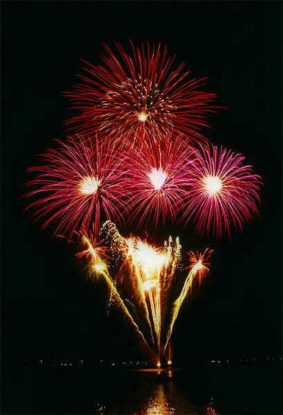 14 Juillet 2010 dans actualités de l'art 409px-Kirschbluetenfest_Hamburg