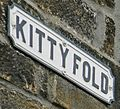 Kittyfold (13292069795).jpg