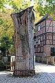 Kloster Wienhausen Eichenstumpf 8927.jpg