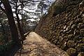 Kochi Castle15s3872.jpg