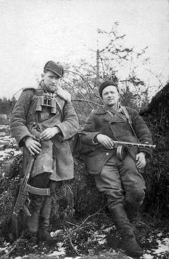 Lithuanian Soviet Socialist Republic - Lithuanian partisans