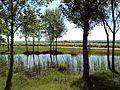 L'étang communal des Terrains Rouges.jpg