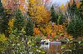 L'automne au Québec (8072353854).jpg