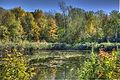 L'automne au Québec (8072774833).jpg
