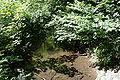 Lüdenscheid - Versetalsperre - Klamer Bach 03 ies.jpg