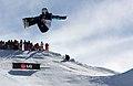 LG Snowboard FIS World Cup (5435922034).jpg