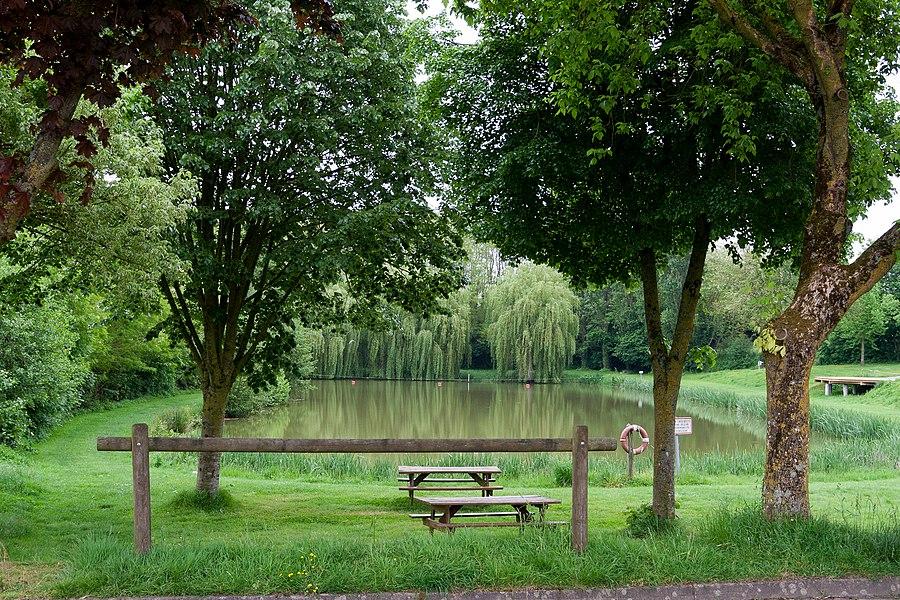 Pond of La Chapelle-Craonnaise.