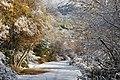 La Pedriza Río Manzanares 03.jpg
