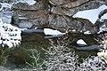 La Pedriza Río Manzanares 06.jpg