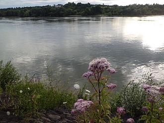 Canton of Barentin - The River Seine in Saint-Martin-de-Boscherville