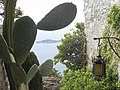 La pointe de Saint Hospice depuis Eze - panoramio.jpg