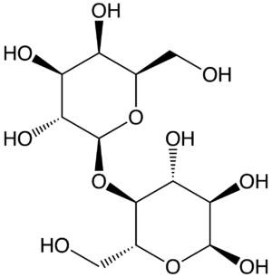 MacConkey agar - Lactose
