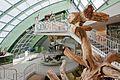 Landesmuseum Niederösterreich Foto Hertha Hurnaus (39).jpg