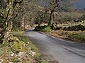 Lane near Challacombe - geograph.org.uk - 1229367.jpg