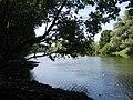 Le Doubs - panoramio.jpg