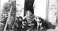 Leffingwell w dogs USGS lek00159.jpg