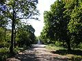 Lenin's Komsomol Park, Odessa 09.JPG