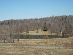 A pond near the summit of Bloss Mountain in Liberty Township